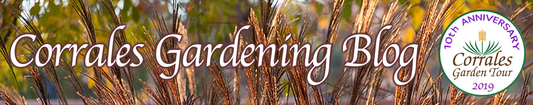 Corrales Gardening BLOG
